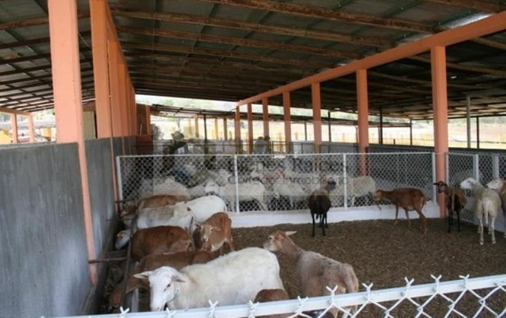 Foto de rancho en venta en  , 20 de noviembre, acala, chiapas, 1923894 No. 05