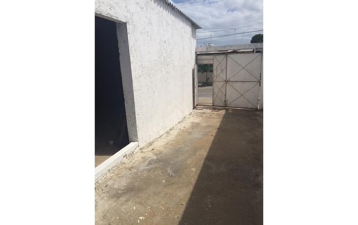Foto de bodega en renta en  , 20 de noviembre, coatzacoalcos, veracruz de ignacio de la llave, 1382053 No. 01