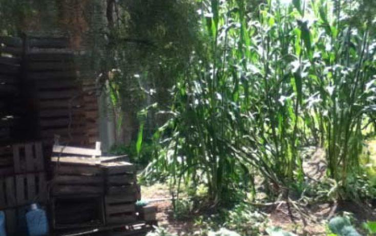 Foto de terreno habitacional en venta en, 20 de noviembre, cocotitlán, estado de méxico, 1593741 no 10