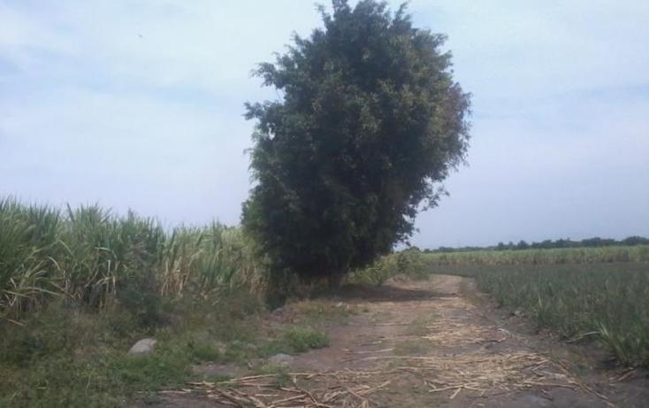 Foto de rancho en venta en  21, casasano, cuautla, morelos, 1765270 No. 08