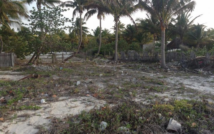 Foto de terreno habitacional en venta en 23 132, san crisanto, sinanché, yucatán, 1792114 no 02