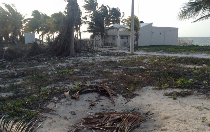 Foto de terreno habitacional en venta en 23 132, san crisanto, sinanché, yucatán, 1792114 no 04