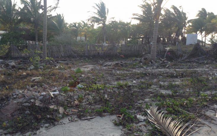 Foto de terreno habitacional en venta en 23 132, san crisanto, sinanché, yucatán, 1792114 no 05