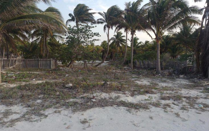 Foto de terreno habitacional en venta en 23 132, san crisanto, sinanché, yucatán, 1792114 no 07
