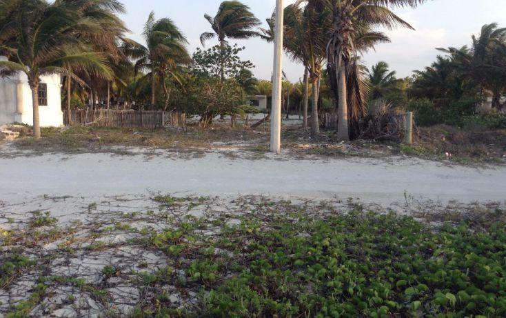 Foto de terreno habitacional en venta en 23 132, san crisanto, sinanché, yucatán, 1792114 no 08