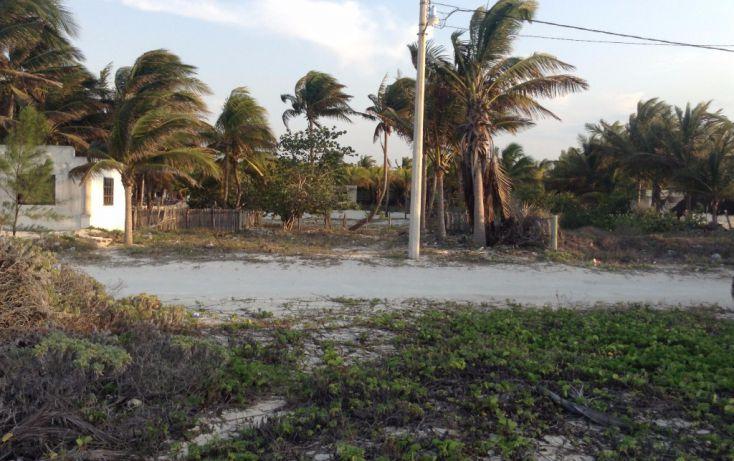 Foto de terreno habitacional en venta en 23 132, san crisanto, sinanché, yucatán, 1792114 no 10