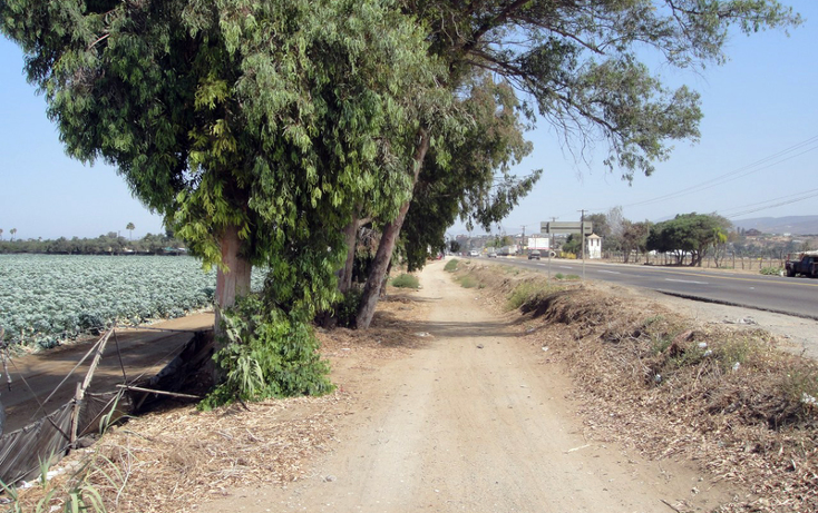 Foto de terreno comercial en venta en  , 23 de noviembre, ensenada, baja california, 1191901 No. 04