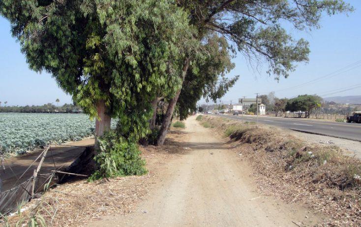Foto de terreno habitacional en venta en, 23 de noviembre, ensenada, baja california norte, 1191901 no 04