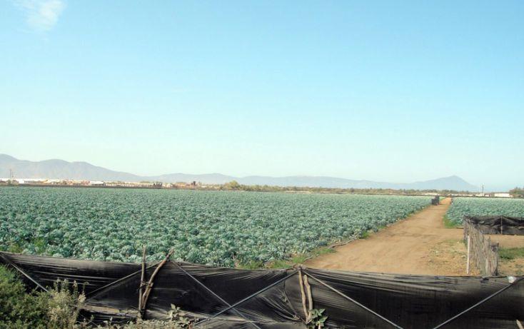 Foto de terreno habitacional en venta en, 23 de noviembre, ensenada, baja california norte, 1191901 no 05