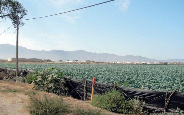 Foto de terreno habitacional en venta en, 23 de noviembre, ensenada, baja california norte, 1191901 no 06
