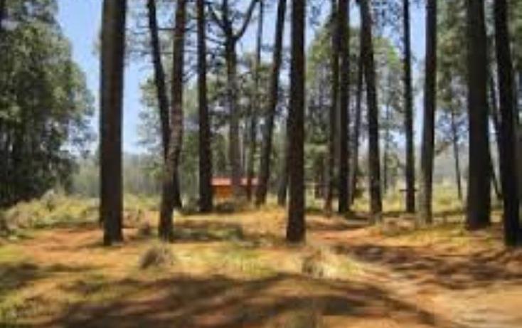 Foto de rancho en venta en  23, paso nacional, tlachichuca, puebla, 1985120 No. 04