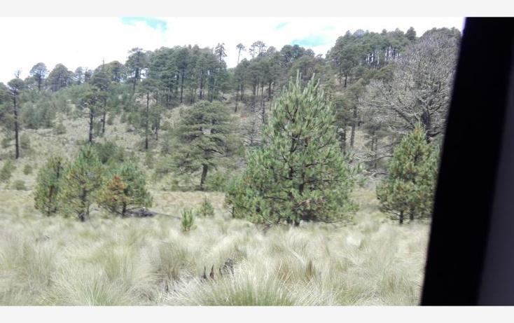 Foto de rancho en venta en  23, paso nacional, tlachichuca, puebla, 1985120 No. 05