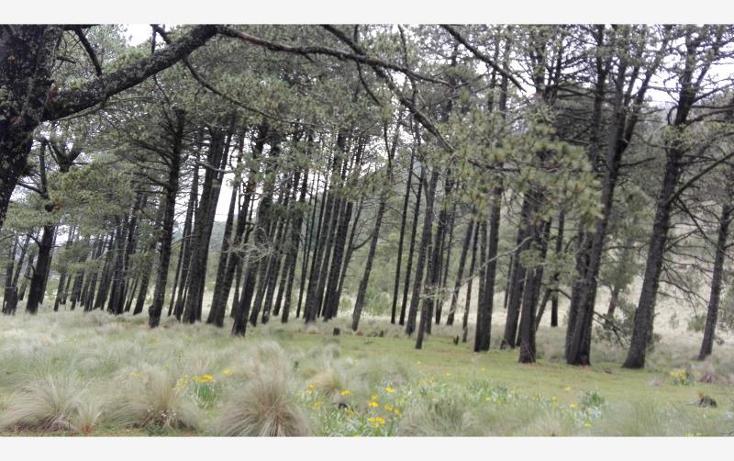 Foto de rancho en venta en  23, paso nacional, tlachichuca, puebla, 1985120 No. 06