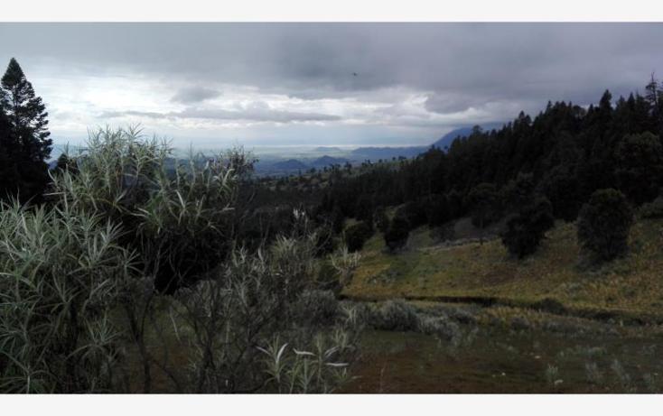 Foto de rancho en venta en  23, paso nacional, tlachichuca, puebla, 1985120 No. 07