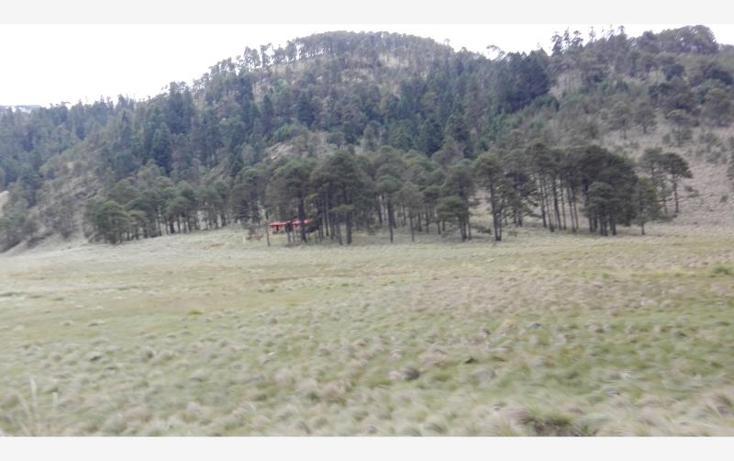 Foto de rancho en venta en  23, paso nacional, tlachichuca, puebla, 1985120 No. 12