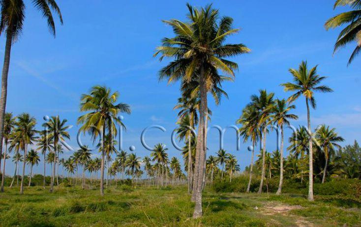 Foto de terreno habitacional en venta en 25 km al norte de barra de galindo, el paraíso, tuxpan, veracruz, 1571768 no 01