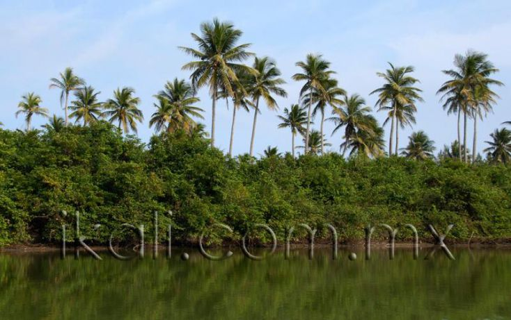 Foto de terreno habitacional en venta en 25 km al norte de barra de galindo, el paraíso, tuxpan, veracruz, 1571768 no 02