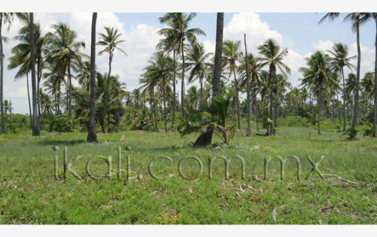 Foto de terreno habitacional en venta en 25 km al norte de barra de galindo, el paraíso, tuxpan, veracruz, 1571768 no 10