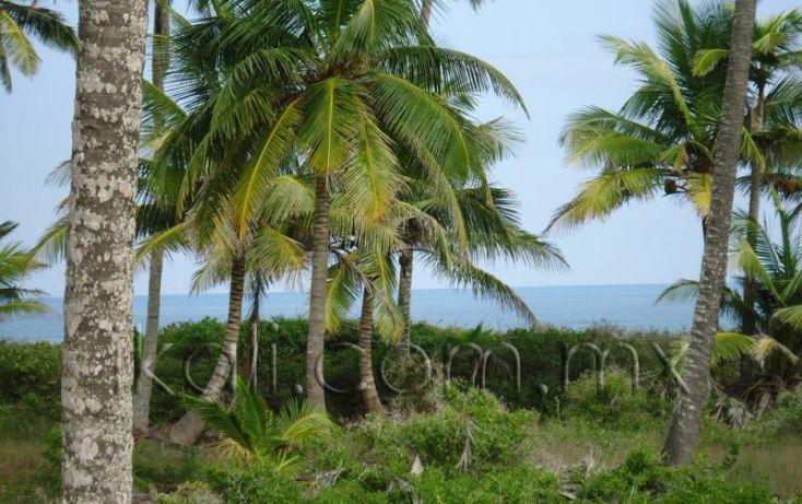 Foto de terreno habitacional en venta en 25 km al norte de barra de galindo, el paraíso, tuxpan, veracruz, 1571768 no 19