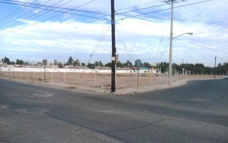 Foto de terreno habitacional en venta en  , 27 de septiembre, mexicali, baja california, 1499455 No. 07