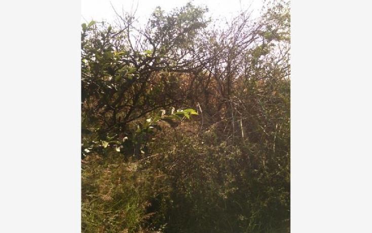 Foto de terreno habitacional en venta en  28, santa cruz de las flores, tlajomulco de zúñiga, jalisco, 1751336 No. 06