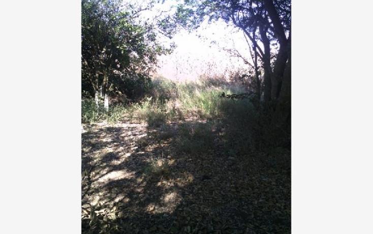Foto de terreno habitacional en venta en  28, santa cruz de las flores, tlajomulco de zúñiga, jalisco, 1751336 No. 07
