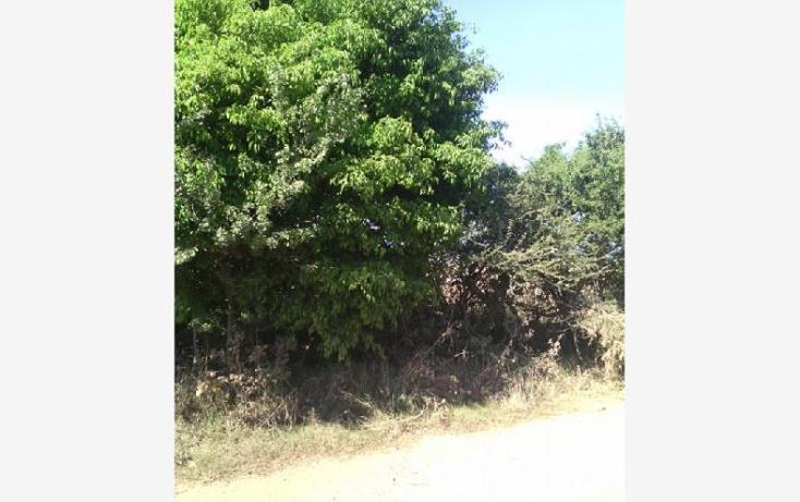Foto de terreno habitacional en venta en carretera morelia 28, santa cruz de las flores, tlajomulco de zúñiga, jalisco, 1751336 No. 09