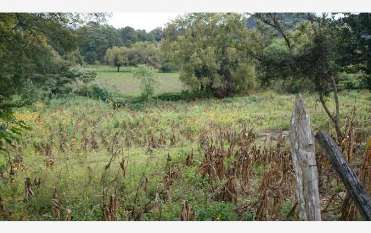 Foto de terreno habitacional en venta en 2a av oriente sur sn, cerro pelón, teopisca, chiapas, 1589696 no 05