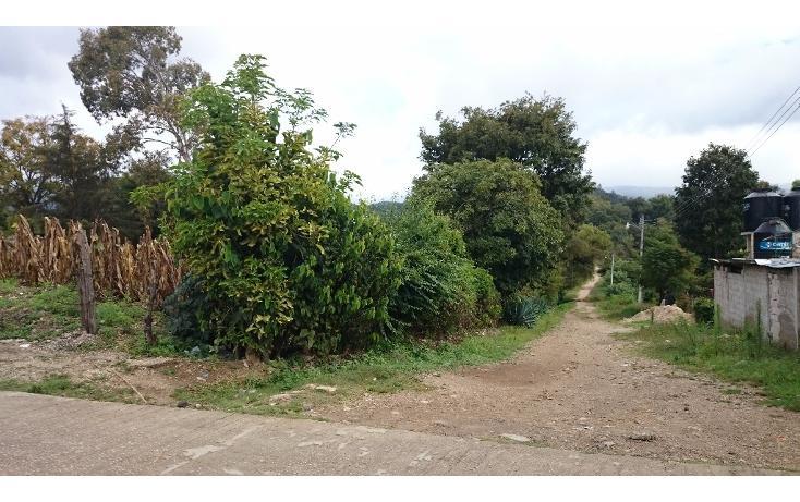 Foto de terreno habitacional en venta en 2a. avenida oriente sur s/n , ramajal, teopisca, chiapas, 1715908 No. 09