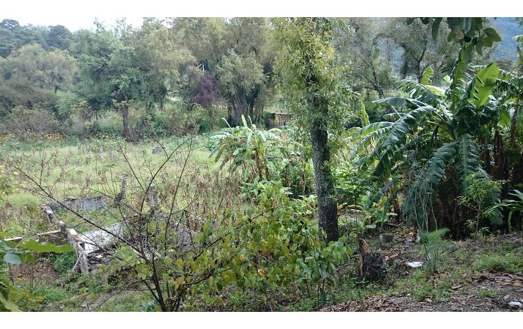 Foto de terreno habitacional en venta en 2a. oriente sur , san sebastián, teopisca, chiapas, 1877652 No. 03