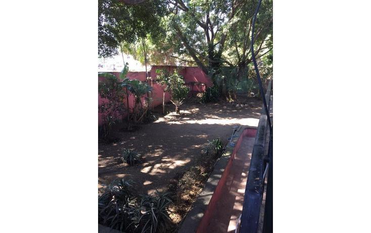 Foto de rancho en venta en 2da privada humboldt , cuernavaca centro, cuernavaca, morelos, 2010276 No. 13