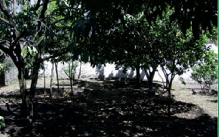 Foto de casa en venta en  , 3 de mayo, emiliano zapata, morelos, 1277263 No. 10