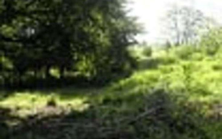 Foto de terreno habitacional en venta en, 3 de mayo, erongarícuaro, michoacán de ocampo, 2022637 no 04
