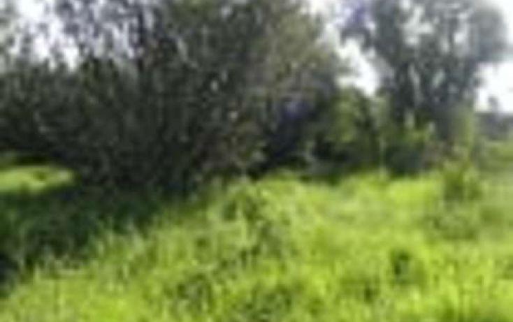 Foto de terreno habitacional en venta en, 3 de mayo, erongarícuaro, michoacán de ocampo, 2022637 no 07