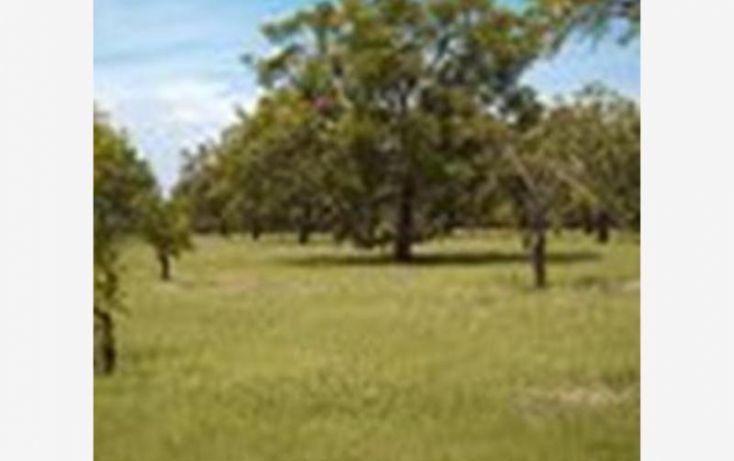Foto de terreno habitacional en venta en, 3 de mayo, xochitepec, morelos, 1304071 no 02