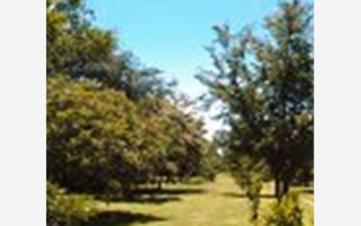 Foto de terreno habitacional en venta en, 3 de mayo, xochitepec, morelos, 1304071 no 05