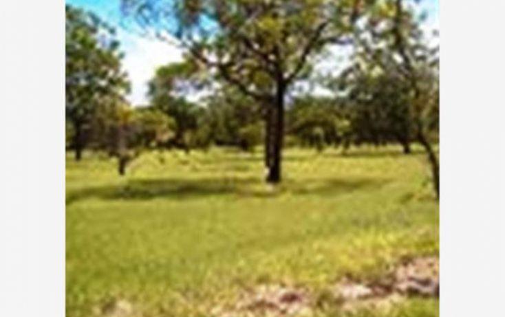 Foto de terreno habitacional en venta en, 3 de mayo, xochitepec, morelos, 1304071 no 08