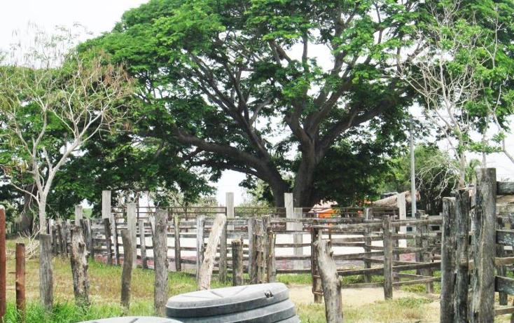 Foto de rancho en venta en  3, el aguacate, cihuatlán, jalisco, 1987410 No. 07