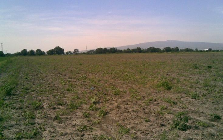 Foto de terreno habitacional en venta en  , 3 guerras, celaya, guanajuato, 2734887 No. 08