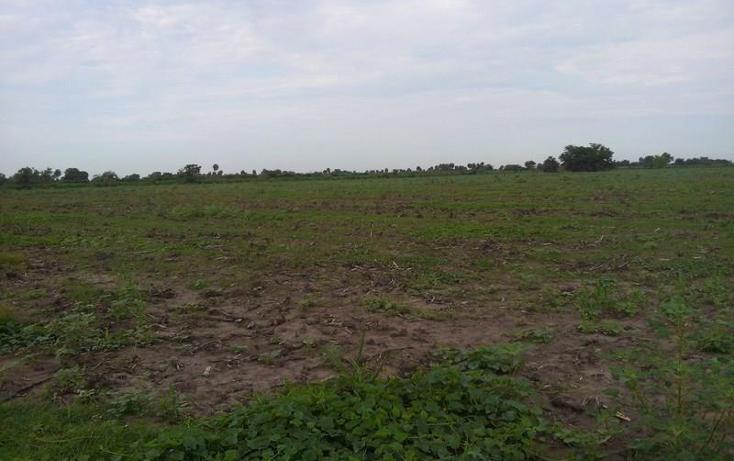 Foto de terreno industrial en venta en  3, independencia, santiago ixcuintla, nayarit, 1066045 No. 02