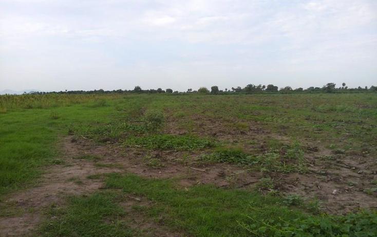 Foto de terreno industrial en venta en  3, independencia, santiago ixcuintla, nayarit, 1066045 No. 03