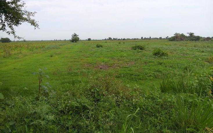 Foto de terreno industrial en venta en  3, independencia, santiago ixcuintla, nayarit, 1066045 No. 06