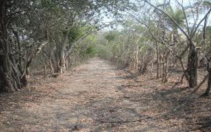 Foto de terreno habitacional en venta en, 3 palos, acapulco de juárez, guerrero, 948377 no 01