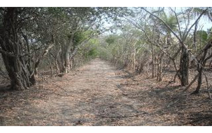 Foto de terreno habitacional en venta en  , 3 palos, acapulco de juárez, guerrero, 948377 No. 01