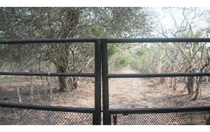 Foto de terreno habitacional en venta en  , 3 palos, acapulco de juárez, guerrero, 948377 No. 02