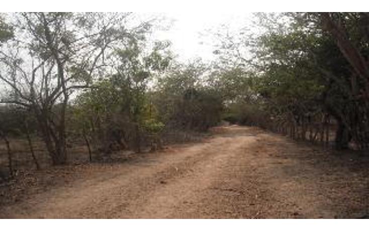 Foto de terreno habitacional en venta en  , 3 palos, acapulco de juárez, guerrero, 948377 No. 03
