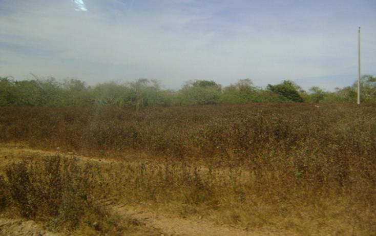 Foto de terreno habitacional en venta en  , 3 palos, acapulco de juárez, guerrero, 948377 No. 05