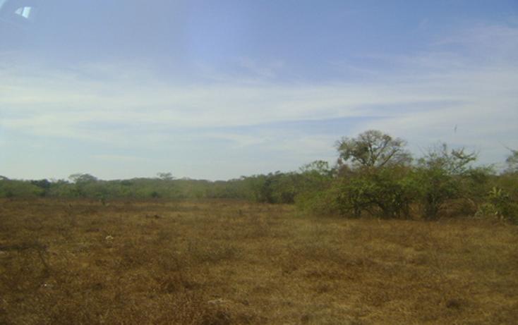 Foto de terreno habitacional en venta en  , 3 palos, acapulco de juárez, guerrero, 948377 No. 06
