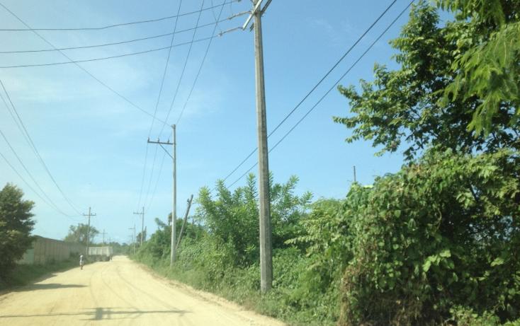 Foto de terreno habitacional en venta en  , 3 vidas, acapulco de juárez, guerrero, 1701020 No. 08