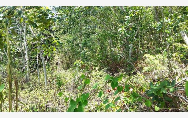 Foto de terreno comercial en venta en  30, bacalar, bacalar, quintana roo, 1849226 No. 03